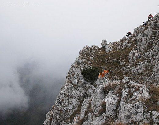 Coborâre din creastă (foto Laurențiu Pavel)